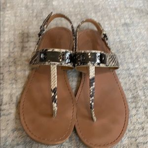 Coach open toe thong sandal